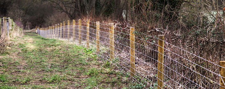 Stock Wire Fencing