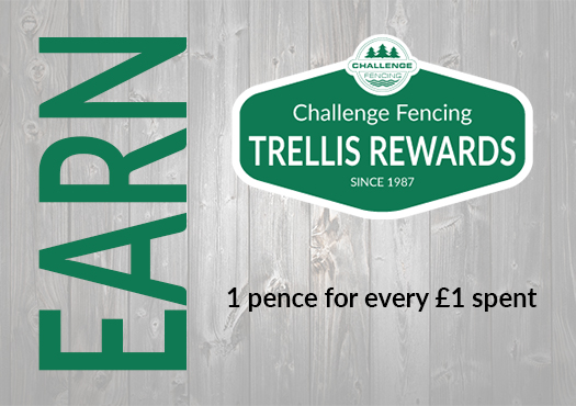 Trellis Rewards Earn
