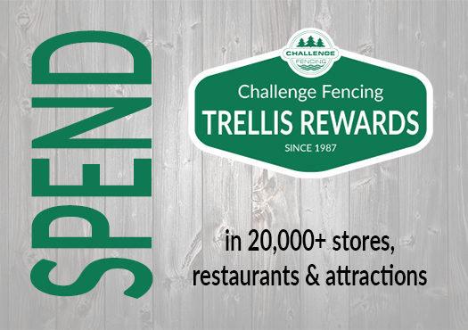 Trellis Rewards Spend